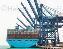 Red Sea Gateway Terminal - Mayview Maersk