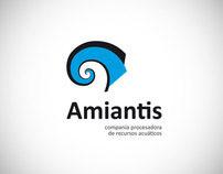 Amiantis