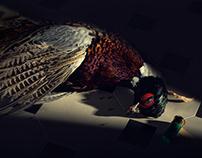 THE FLYING ELK RESTAURANT – Photo shoot