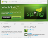 SpringSource Developer Community