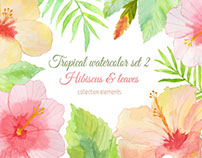 Hibiscus & leaves. Tropical watercolor collection 2.