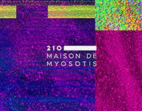 210: MAISON DE MYOSOTIS Brand Identity