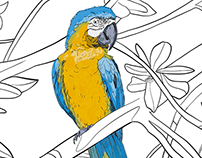 Hand drawn Ara parrots pattern