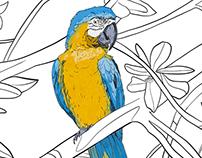 Hand drawn Ara parrots pattern