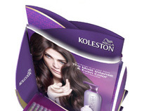 Koleston - In-store Guideline Development