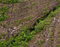 Serranía de Chiribiquete