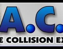 A.C.E.  Automobile Collison Expert