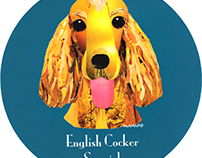 008 | English Cocker Spaniel