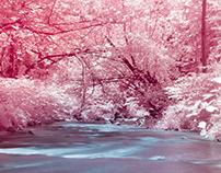 Madam Brett Park in Infrared