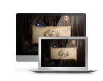 Ferromet | Web Site & Logo