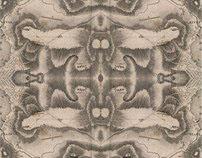 Bradford Textiles Designs