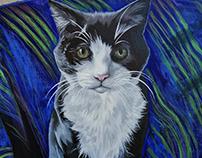 Cat Portrait | Pepsi