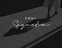 Signeton - Font Script Typeface