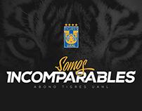 ABONO TIGRES 2016 - 2017