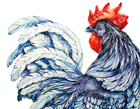 Roosters / watercolor