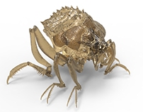 Lirgin Beetle (Skyrealms of Jorune RPG)