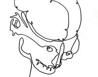 1 Line Drawings