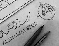 alshamaal stud Identity