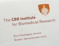 CBR Institute / Identity