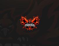 Phoenix Rising - Brand Identity