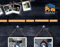 pagina web ARANI