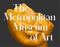 The Metropolitan Museum of Art Website Concept