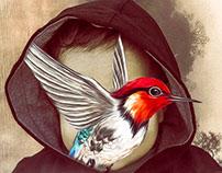 Bird Baby 'Ahmed'