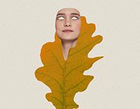 Fall equinox (The end)