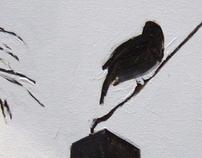 Andorinhas / Swallows