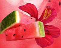 Jerry LoFaro:  Fruit Series