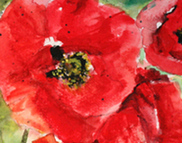 Poppies Series Watercolour paintings by Chinh