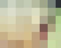 12 pixels
