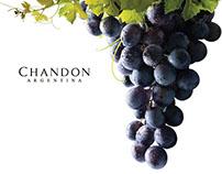 """Chandon - Campaña """"Vendimia somos todos"""""""