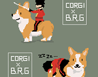 Go go Corgi - corgi x BRG