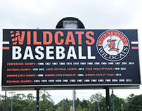 Libertyville High School | Baseball