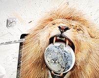 Domptez le Lion