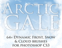 Arctic Gale Photoshop Brushes