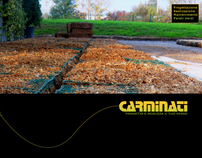 Concept of a catalog for the Carminati Progetta - 2010