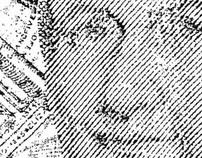 Paper Portraits