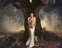 The Four Seasons FOTOS - Anne Akiko Meyers
