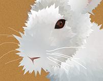 Fluffy Rabbit (from Tutorial)
