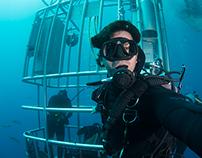 My underwater and nature photofolio