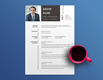 Free Credit Risk Manager Resume Template