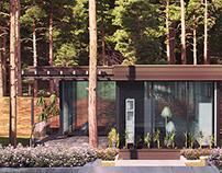 "Visualization of the House of velegozh Park ""Prestige"""