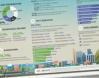 St. John's Regional Demographics and Opinion Survey
