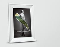 John Patrick: Organic Ad