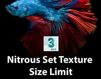 Nitrous Set Texture Size Limit in 3dsMax