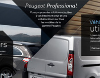 Peugeot Professional Belgium promotional website