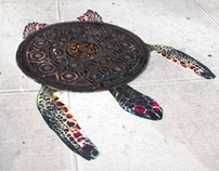 Sea Turtle Manholes