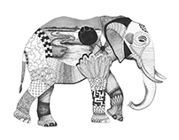 South African Big Five Illustration